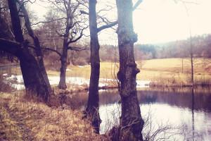 U rybníčka
